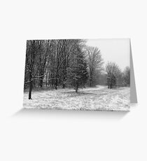 Winter Meadow Greeting Card