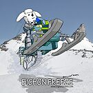 Bichon Freeze by AloftStudios