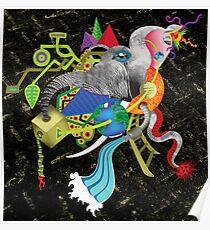 evolução - evolution Poster