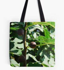 Fig Tree Tote Bag