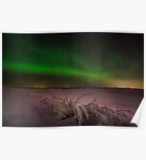 Northern lights on the Praries Poster