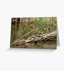 Community Log  Greeting Card