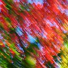 Untitled (fall) - 2013 by Joseph Rotindo