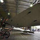 Deperdussin, Point Cook Airshow, Victoria, Australia 2014 by muz2142
