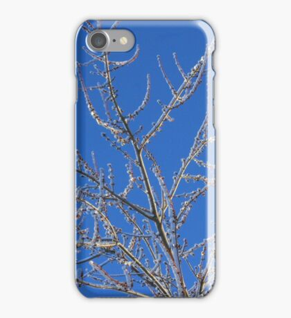 Tree in Ice 2 iPhone Case/Skin