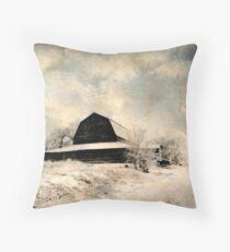 Forgotten Barns...Caldwell, Idaho Throw Pillow