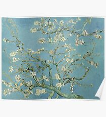 Almond blossom - Vincent Van Gogh  Impressionism  Famous Paintings Poster