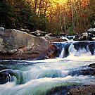 Autumn Cascade by Terri~Lynn Bealle