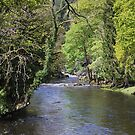 River Conwy at Betws-y-Coed  by Helen Greenwood