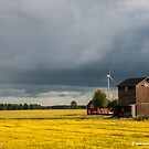 Farmhouse, Barn and Wind Turbines by Michael Brewer