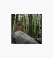 Oregon Sasquatch Art Board