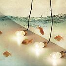 ideas and goldfish by Vin  Zzep
