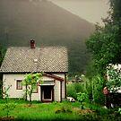 Quaint Norwegian Cottage by ValSteve59