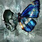 Bonefly by Jessica Ashburn