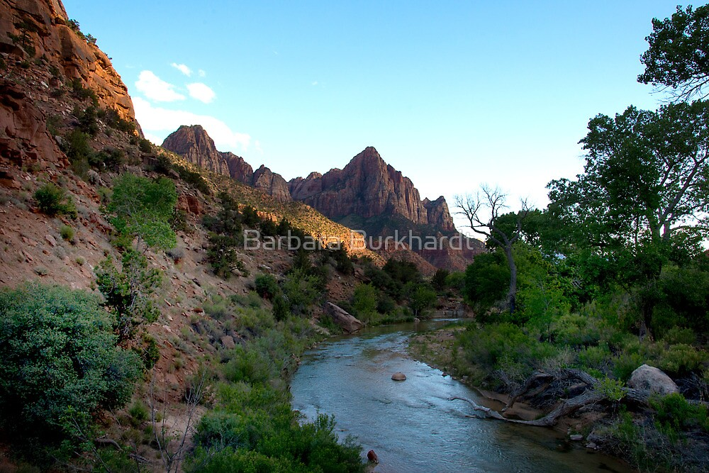 Into the Night - Sunset at Zion by Barbara Burkhardt