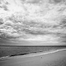 Black and White Beach by Amy Dee