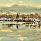 Golden Winter At Golden Ponds by Gregory J Summers