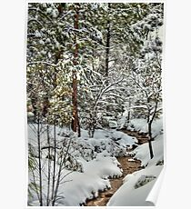 Snowy Mountain Creek Poster