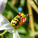 The Santa Ladybug by WildestArt