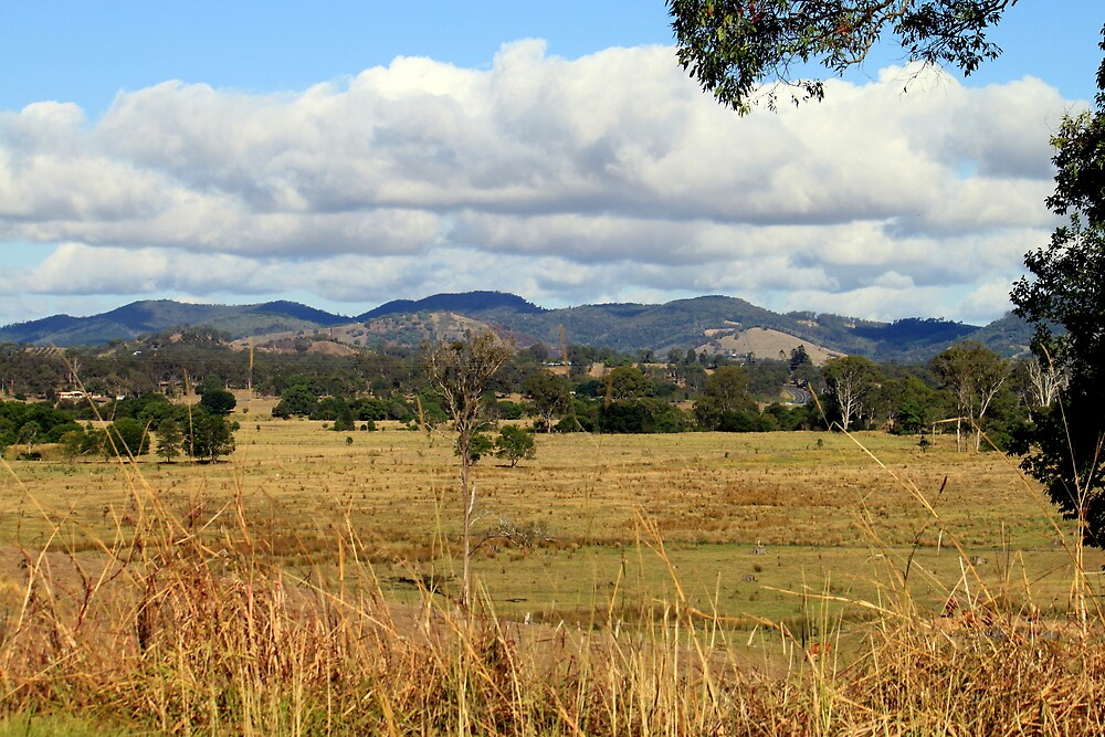 Looking towards the Mary Valley by Jenelle  Irvine