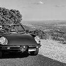 Alfa Romeo Spider by Mark Buchanan