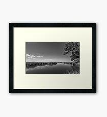 Ashley River - South Carolina I Framed Print
