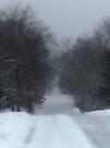 Snowy Road by FrankieCat