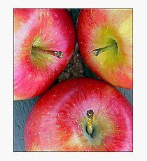 Apple,Apple,Apple Stems Photographic Print