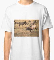 Herding Classic T-Shirt