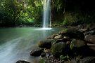 Twin Falls, Maui by Michael Treloar