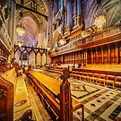 Magnificent Cathedral by Raymond Warren