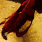 Red Leaf on Beach Abstract Impressionist by pjwuebker