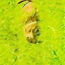 Prairie Dog Abstract Impressionism by pjwuebker