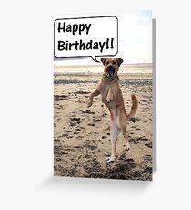 Happy Dog - Happy Birthday Greeting Card