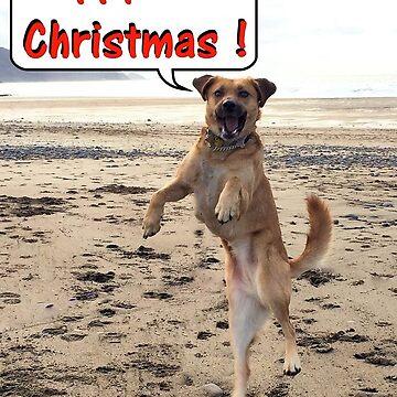 Happy Dog - Happy Christmas by hartrockets