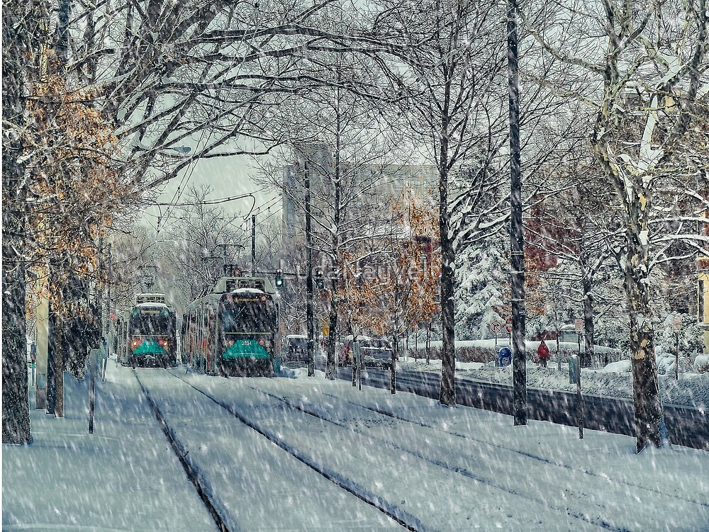 Never ending winter. Brookline, MA by LudaNayvelt