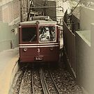 Corcovado Rack Railway by photograham