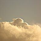 NUAGE #172 by Laura E  Shafer