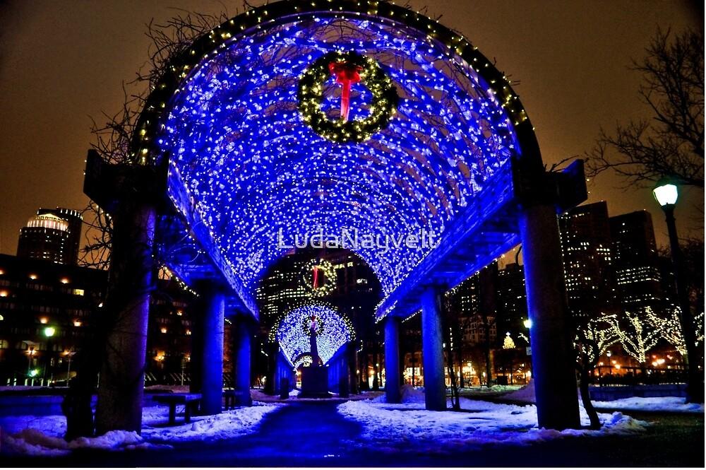 Very Merry Christmas from Boston, MA by LudaNayvelt