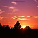 SUNSET #005 by Laura E  Shafer