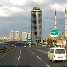Istanbul panorama by Maria1606