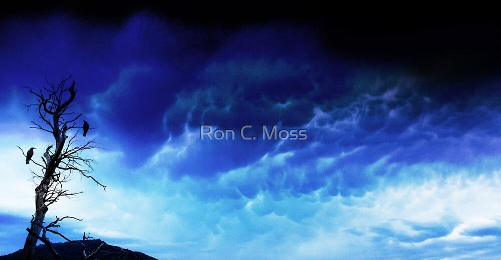 One Tree Storm by Ron C. Moss