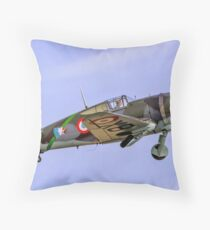Curtiss Hawk H75C-1 No 82 G-CCVH Throw Pillow