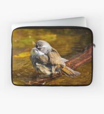 White-browed Scrubwren Laptop Sleeve