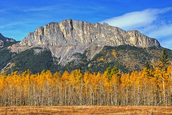 Fall Colors and Mount Yamnuska by James Anderson