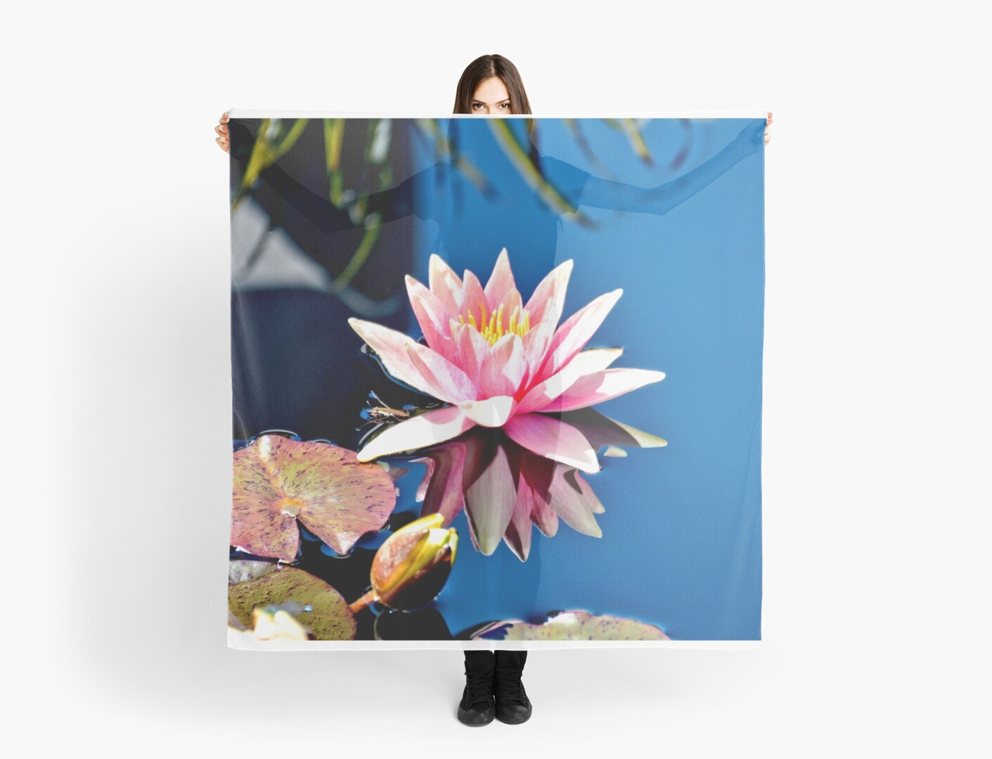 Pink Water Lily in Pool by Amy McDaniel
