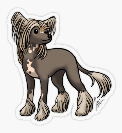 Chinese Crested Transparent Sticker