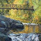 Boulder Creek - Late Afternoon by Tom Roderick