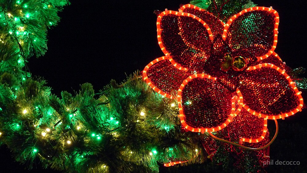 Holiday Colors by phil decocco