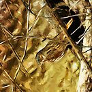Fox Sparrow Songbird Abstract Impressionism by pjwuebker